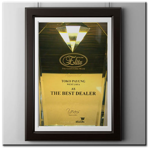 Award-The Best Dealer Elite Springbed